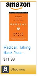 radical-taking-back-your-faith-from-the-american-dream
